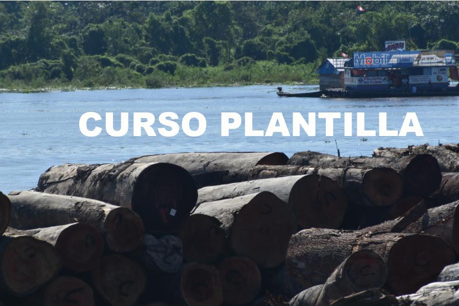 PLANTILLA DE CURSO SERFOREDUCA